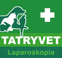Tatryvet